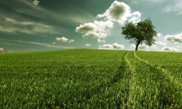 Progetto integrato di miglioramenti ambientali